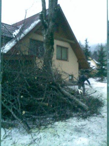 Orezávanie konárov - Tatranská Kotlina - ProRoof