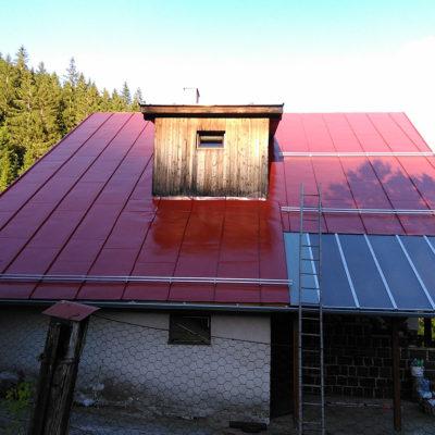 Čistenie a náter strechy, Dolka (pri Dobšinej) - ProRoof