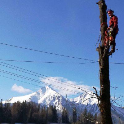 Orezavanie konarov a zrezavanie stromov-ProRoof